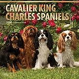 Cavalier King Charles Spaniels 2018 Calendar