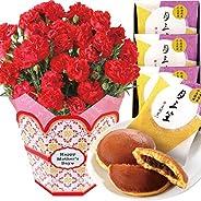 花のギフト社 母の日 カーネーション 文明堂 どら焼き 花とスイーツ 鉢花ギフト プレゼント 5号鉢