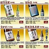 日本酒 大吟醸 全国10酒蔵 飲みくらべ 10本組 720ml×10本 お中元 ギフト プレゼント