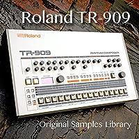 for ROLAND TR-909 - Perfect Original very useful 24bit Wave/Kontakt Studio Samples Library on DVD or download