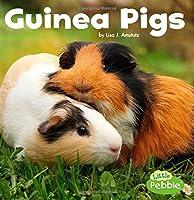 Guinea Pigs (Our Pets)
