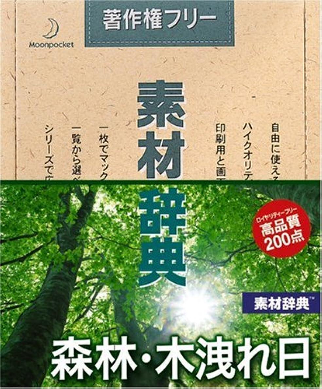 やむを得ない資本フェード素材辞典 Vol.134 森林?木洩れ日編