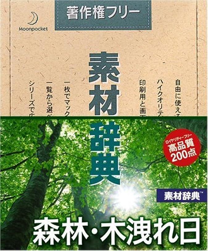 流出笑いに慣れ素材辞典 Vol.134 森林?木洩れ日編