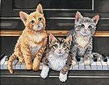"""ディメンジョンズ クロスステッチ 刺繍キット""""3匹の猫""""      Dimensions Needlecrafts Stamped Cross Stitch Kit, Meowsical Trio       DIM クロスステッチキット Meowsical Trio [並行輸入品]"""