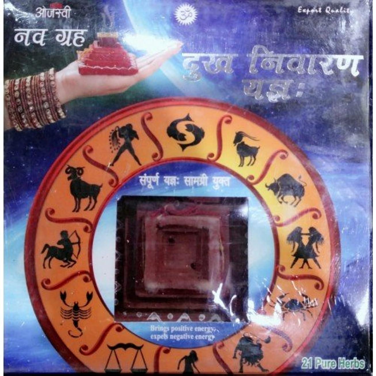 抑圧芸術的実験的Ojasvi Navgrah Dukh niyaran Yagna ( Daily Homa )