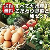 朝ごはん本舗 九州野菜とうみたて卵セット 13品以上