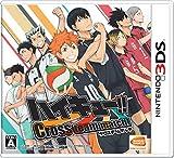 ハイキュー!! Cross team match! (【初回限定特典】「ハイキュークエストII」が遊べるようになるダウンロード番号 同梱)