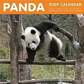パンダ2009カレンダー C-192-PA