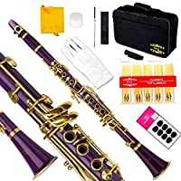 Glory Purple/Gold keys B Bb Flat Clarinet with Second Barrel 11reeds8 Pads cushionscasecarekitClick to see More Colors [並行輸入品]