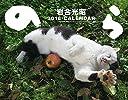 2018猫カレンダー のら ( カレンダー )