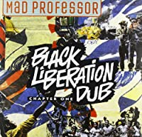 Black Liberation Dub [12 inch Analog]