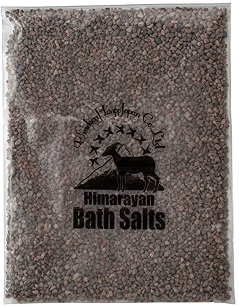 パワーナビゲーション教育するヒマラヤ岩塩 バスソルト ブラック 小粒 2kg