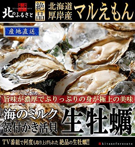 北のふるさと 北海道厚岸産「マルえもん」生牡蠣 殻付きLLサイズ×30個 カキナイフ・軍手付 日本一旨い厚岸のかきは、身がプリッと厚みがあり、口に広がる濃厚な味わいが特徴です。