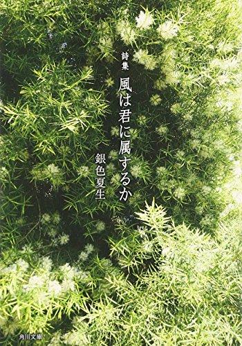 詩集 風は君に属するか (角川文庫)の詳細を見る