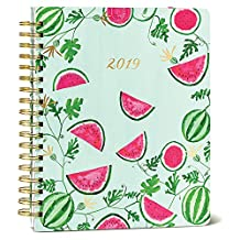 High Note Fresh & Colorful Watermelons Large 2018-2019 Organizer Planner