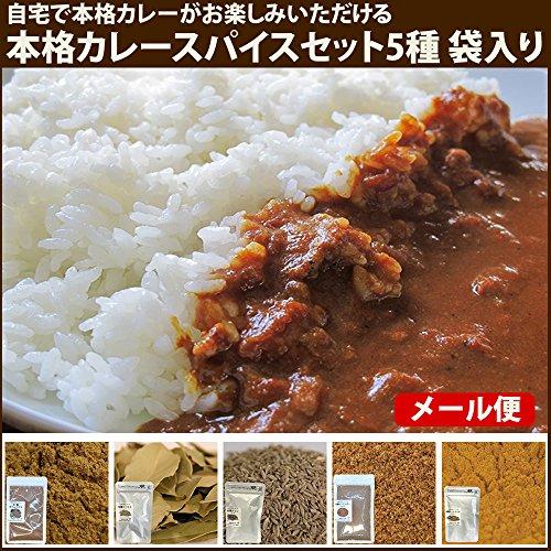 鎌倉香辛料 本格カレースパイスセット5種 袋入りオーガニックスパイス ハーブ
