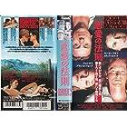 恋愛の法則 [VHS]