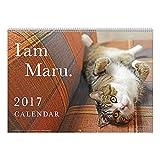 アートプリントジャパン 2017 まるちゃん カレンダー No.029 1000080090