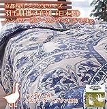 京都西川 シングルサイズ 羽毛肌掛け布団 (日本製)ハンガリー産グースダウン90% 0.3kg (ブルー色)