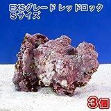 (海水魚)ライブロック EXSグレード レッドロック Sサイズ(3個)(形状お任せ) 本州・四国限定[生体]