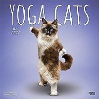 Yoga Cats - Joga-Katzen 2022 - 18-Monatskalender: Original B…