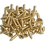 RuiLing Pack of 50 Gold Electric Guitar Pickguard Backplates Mounting Screws, Electric Guitar Bass Cover Plate Screw for ST T