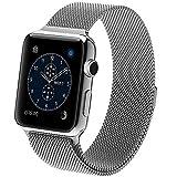 Apple Watchベルト,SHANSHUIビジネス風マグネット式ステンレス留め金製交換ベルト(42mm,シルバー)