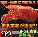 オマール海老(500g)4尾入 【ロブスター 活】 のし お年賀