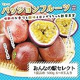 パッションフルーツ 1袋6-8玉入り 沖縄県産 約1k (2袋)