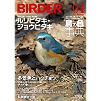 BIRDER(バーダー)2018年1月号 ルリビタキ・ジョウビタキ/鳥の色 事典【特別付録 BIRDER DIARY 2018】付き