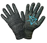 (GLIDER gloves) グライダーグローブ イングレス 公式ライセンス タッチスクリーングローブ スマホ対応手袋 (L, 青(レジスタンス))