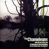 Dreams In Celluloid - 2CD Collectors Edition 画像
