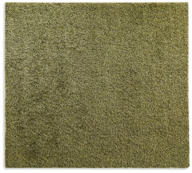 オーダーラグ ミックスハイパイル シャギー グリーン 幅105cm 長さ235cm アレルブロック 防ダニ