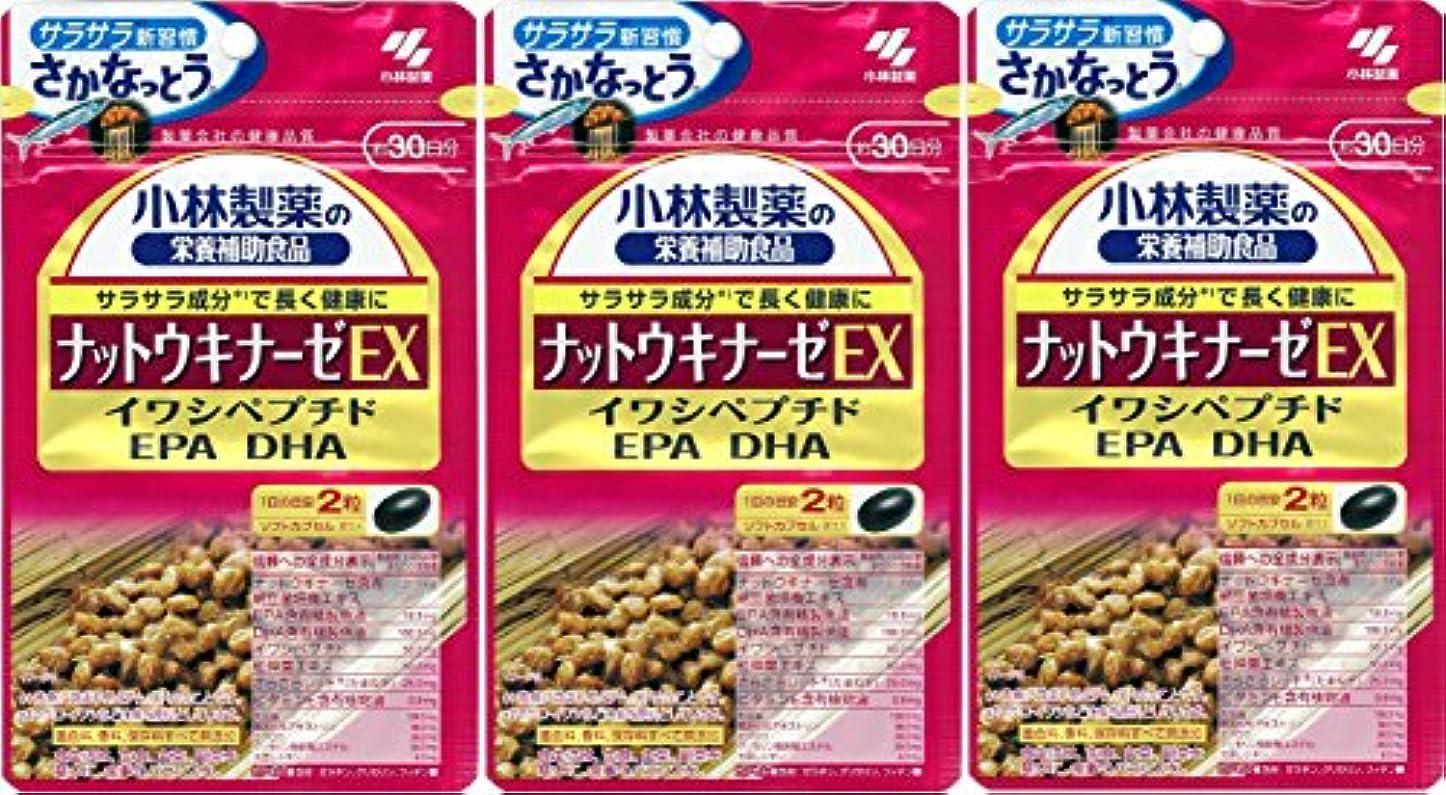 荒らす貴重な起こりやすい小林製薬の栄養補助食品 ナットウキナーゼEX60粒 x3個セット