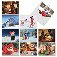 Fuzzy Tummies Thank You Joke Greeting Card 10 Assorted Christmas Cards (M6627XSG)