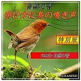明け方に鳥の鳴き声: 自然の音: 特別版