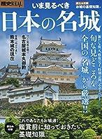 歴史REALいま見るべき日本の名城 (洋泉社MOOK 歴史REAL)