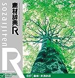 素材辞典[R(アール)] 037 森林・木洩れ日