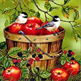 Diamond Painting by Number Kits DIY Crystal Rhinestone Cross Stitch Embroidery Arts Craft Picture Supplies for Home Wall Decor - A Barrel of Apples 12x12 inches