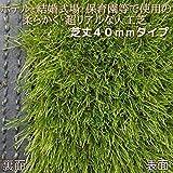 リアル 人工芝 ハイグレード ロール 防炎 丈40mm 幅1m 長さ1m単位切売り 最大9m