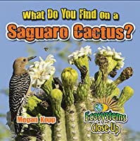 What Do You Find on a Saguaro Cactus? (Ecosystems Close-Up)