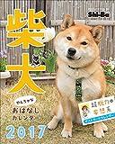 2017カレンダー 柴犬やんちゃな おはなしカレンダー ([カレンダー])