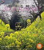 旅する映像〜鉄道シリーズ〜Vol.3 いすみ鉄道 Spring 3D版