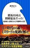 邪馬台国は別府温泉だった!: 火山灰に封印された卑弥呼の王宮 (小学館新書)