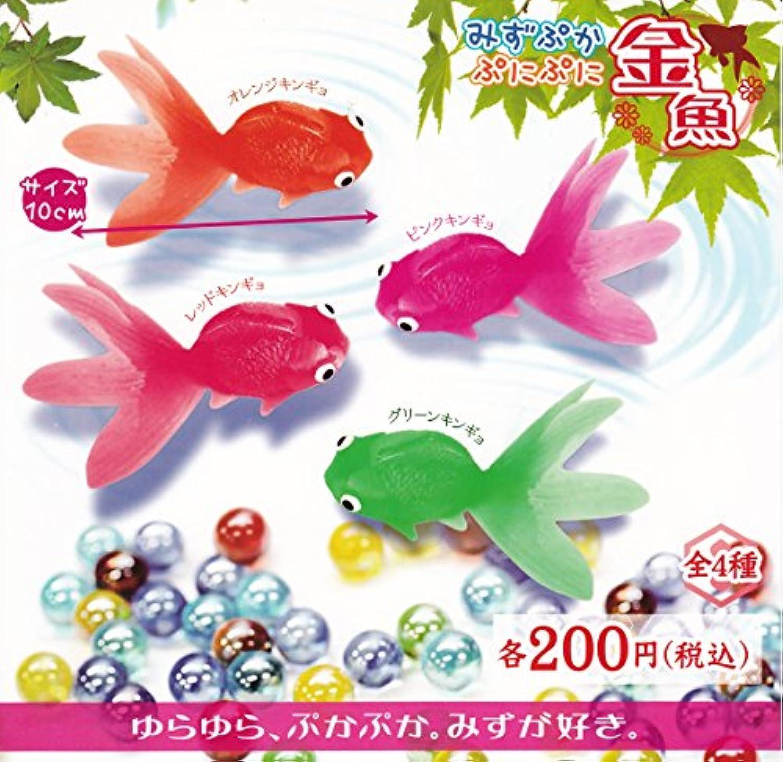 みずぷか ぷにぷに金魚 全4種セット ガチャガチャ