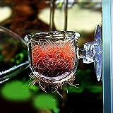 Kisstaker 水槽用 ワームフィーダ フィーダーカップ 餌入れ 手軽 給餌器 熱帯魚水槽用 魚 水族館 小 簡単 可愛い 餌やり器 赤虫 フードフィーダー (糸目) [並行輸入品]