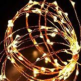 EloBethソーラーストリングライト 屋外ガーデンホームズクリスマスパーティーのため ストリングライト LED ジュエリーライト イルミネーション ライト LED ワイヤーライト クリスマス/飾り/電飾/クリスマスライトアンビアンス照明パワード 100球/150球/200球LEDライト (200球, ウォームホワイト)
