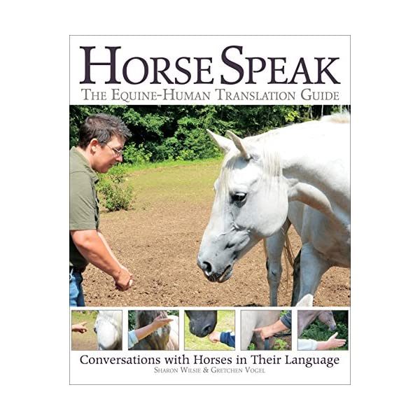 Horse Speak: The Equine-...の商品画像