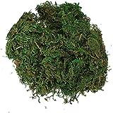 SODIAL(R) 緑の人工苔 ライニング植物フラワーガーランド装飾