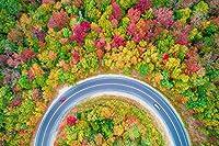 芸術品ズック製印刷ポスター、内装用品壁のデコレーションポスター(秋、木々、森林、道路、車、トップビュー)33x50cm
